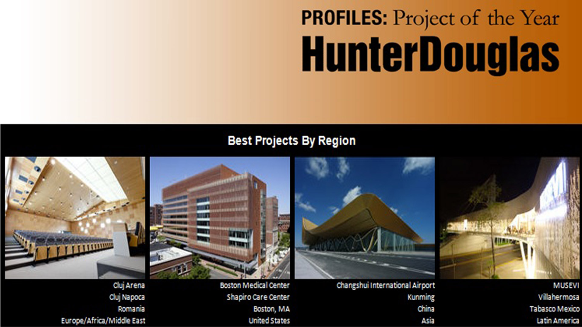 Cluj Arena, Project of the Year,  HunterDouglas, 2011
